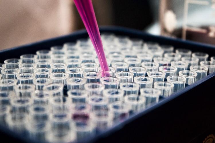 Czy szczepionka przeciwko gruźlicy pomoże w cukrzycy? Wyniki przełomowych badań.